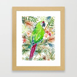 MILLIE THE MILITARY MACAW Framed Art Print