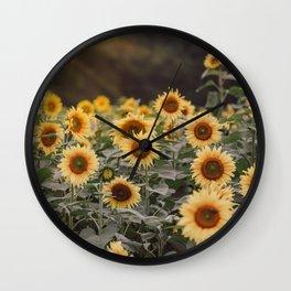 After the Rain (Sunflower Field I) Wall Clock