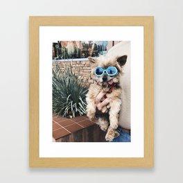 Clout Pooch Framed Art Print