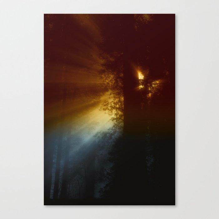 CALIFORNIAN FOG Canvas Print
