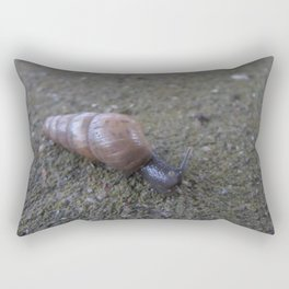 Slow and Steady Wins the Race Rectangular Pillow
