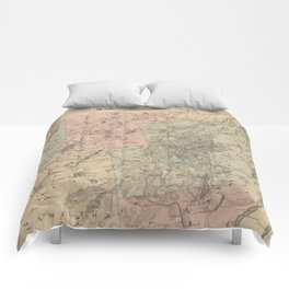 Vintage Map of The Adirondack Mountains (1879) Comforters