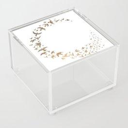Starbirds Acrylic Box