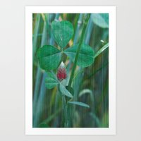 clover Art Prints featuring Clover by Christine baessler