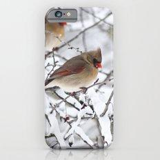Female Cardinal Slim Case iPhone 6s