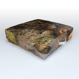 Winter Stream 1009 - Zion National Park, Utah Outdoor Floor Cushion