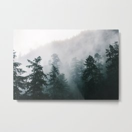 Forest Fog X Metal Print