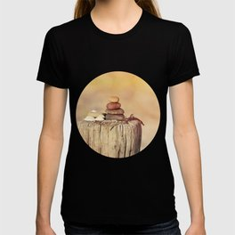Balanced stone cairn in sunset light T-shirt