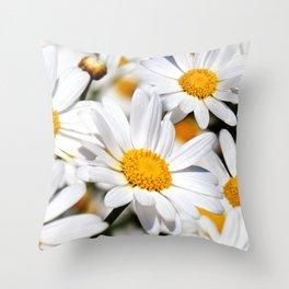 Daisy Flowers 0136 Throw Pillow