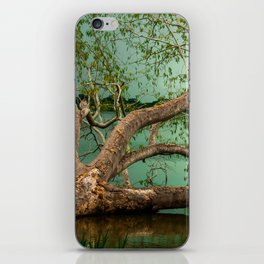 Wandering Branches iPhone Skin