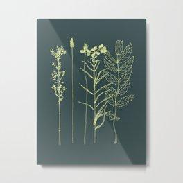 Wildflower Lineup Metal Print