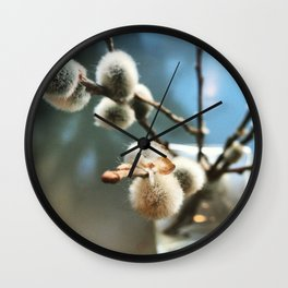Pussy Willow Branches Wall Clock