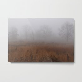 Misty Prairie Metal Print