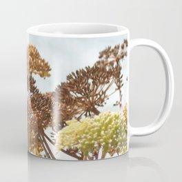 Succulent wild flowers by the sea Coffee Mug