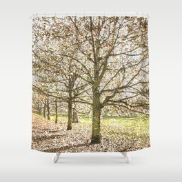 Snow trees Greenwich Park London Shower Curtain