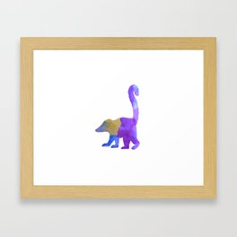Coati Framed Art Print