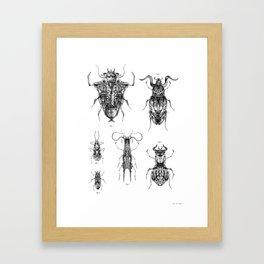 Entomologic Bones Framed Art Print