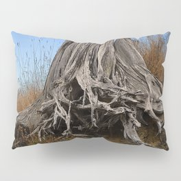 WEATHERED STUMP AND ROOTS ON BEACHSIDE BLUFF Pillow Sham
