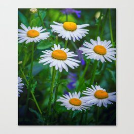 Three Tiers of Beauty Canvas Print