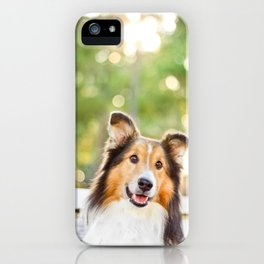 Sheltie iPhone Case