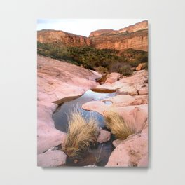 Mountain Creek Metal Print