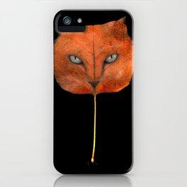 Autumn Cat-4 iPhone Case