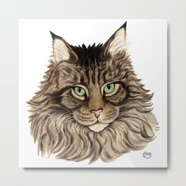 Maine Coon Cat-  Cats By Nina Lyman Metal Print
