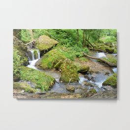 Mossy Green Brook Metal Print