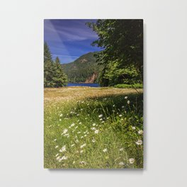 Field of Daisies and Lake Crescent Metal Print