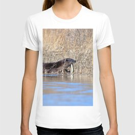 Watercolor Otter 17, Janes Island, Maryland T-shirt
