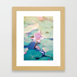 Cute Pink Blooming Lotus Framed Art Print
