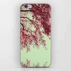 Autumn Blood iPhone & iPod Skin