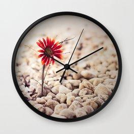 Growing Through Wall Clock