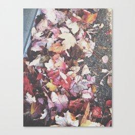 Autumn 13 Canvas Print