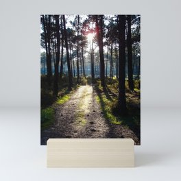 Path to the Light - Colorful Mini Art Print