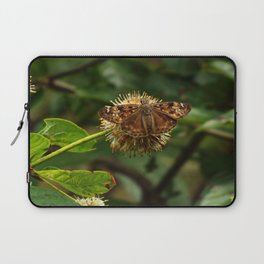 Moth on a Puffball Laptop Sleeve