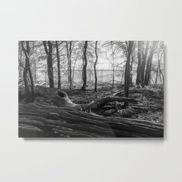 Lake Grapevine - Texas Metal Print