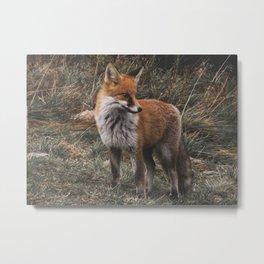 Feelin' Foxy Metal Print