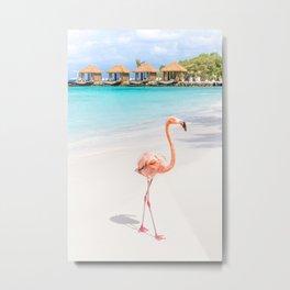 Flamingo Beach, Aruba Metal Print