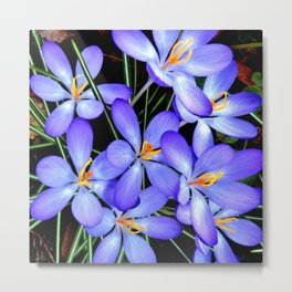 Blue Wildflowers Metal Print