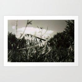 Chippewa Lake II Art Print