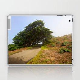 Wind Swept Trees Laptop & iPad Skin