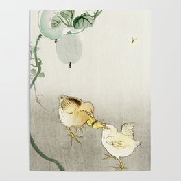 Chicken fighting over butterfly - Japanese vintage woodblock print Poster
