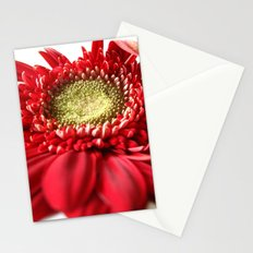 Red and White 2 Stationery Cards
