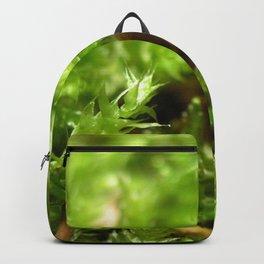 Macro shot of moss Backpack