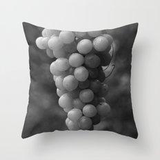 Harvest time - B&W 8508 Throw Pillow