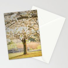 Taking a Mental Picture Stationery Cards