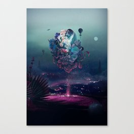 flying object Canvas Print