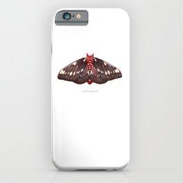 Splendid Royal Moth (Citheronia splendens) iPhone Case