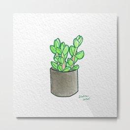 Ice Plant Metal Print